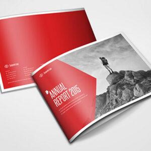 Report_annual_design_printing_custom report_Kigali_Haksoft